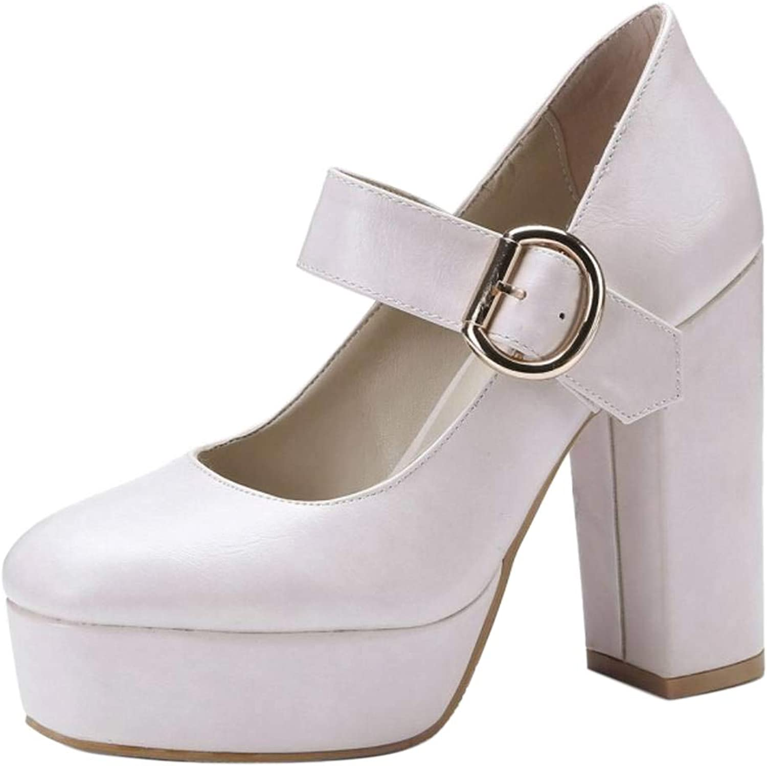 CularAcci Women Comfort Block Heel Mary Janes shoes