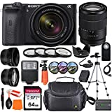 Sony Alpha a6600 Mirrorless Digital Camera with 18-135mm Lens + Wide-Angle & Telephoto Conversion Lens, 64GB Memory Card, Flex Tripod, Close-up & Filter Kits, Digital Flash & More…