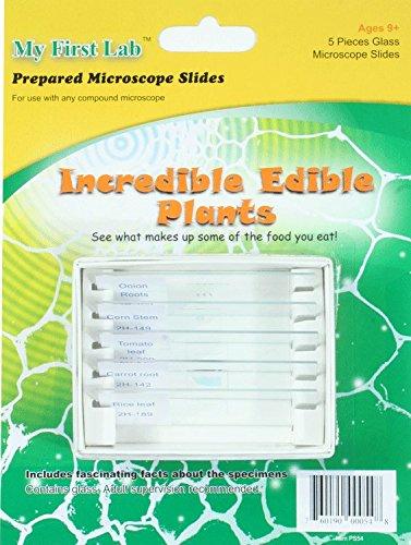 My First Lab Incredible Edible Plants Prepared Slide Set