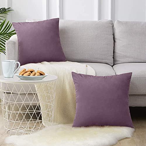 FORTRY Juego de 2 fundas de cojín de terciopelo suave y sólido, decorativas, cuadradas, para sofá, dormitorio, cojín lumbar, 55 x 55 cm, color morado