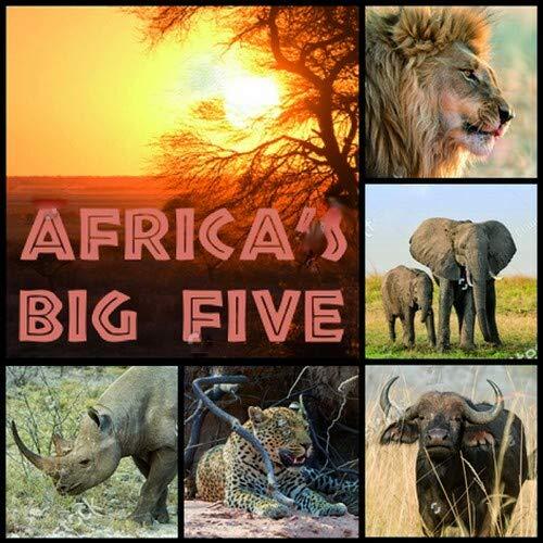 20 Servietten Afrikanische Tiere/Löwe/Elefant/Büffel/Leopard/Nashorn/Afrika 33x33cm