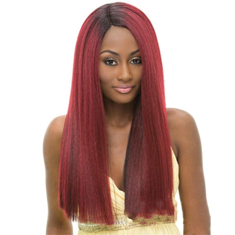 作動する米ドルうんざりBOBIDYEE 女性のためのロングヘアウィッグパーティードレスアップウェディング仮装ナイトクラブの小道具コンポジットヘアレースウィッグロールプレイングかつら (色 : Straight hair oblique bangs)