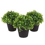 Juvale Planta Artificial decoración (Juego de 3) - casa de Las Plantas Artificiales de Interior decoración - 5 x 5,2 x 5 Pulgadas