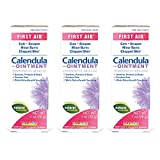 Boiron Calendula First aid Ointment for Skin Irritation and Burns, 1 Ounce, 3-Pack