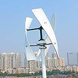 NL uso domestico 600 w 12 24 v 48 300 RPM Turbina eolica Verticale Con Generatore Coreless Per Off Grid On Grid System (24 V, Verde)