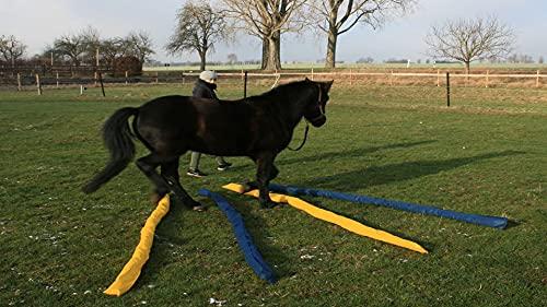 Longier-Hilfe für Pferde, blau & gelb, 4 Stk., 2,8m lang, Pferdeausbildung, Richtläufer, Bodenarbeitshindernis, Hindernis-Stangen - 5