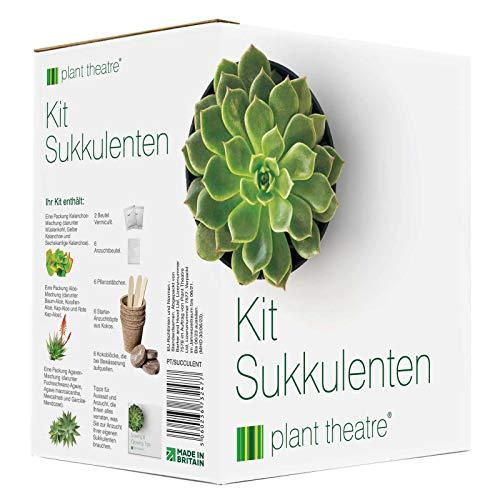 Plant Theatre Sukkulenten-Kit - Geschenk-Samen-Kit mit Supersukkulenten-Pflanzensorten für Anbau und leichte Pflege!