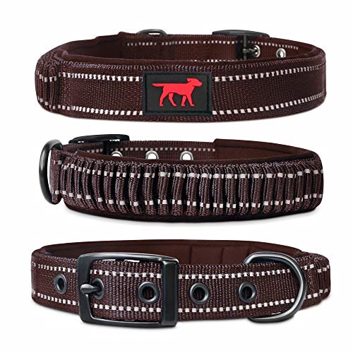 Heavy Duty Dog Collar With Handle
