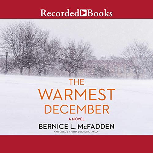 The Warmest December audiobook cover art