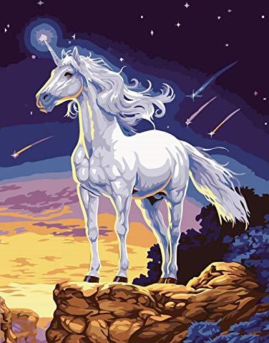 Schilderset voor volwassenen, kinderen, om te schilderen op cijfers, wit paard 's nachts, olieverfschilderij, digitaal, om zelf te maken, canvas, cadeau voor cijfers, acryl, op canvas, handwerk, decoratie voor thuis (zonder lijst) 40 x 50 cm
