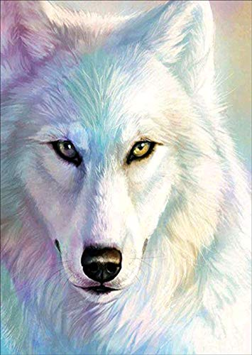 DIY 5D Diamond Painting Kit, White Wolf Crystal Rhinestone Embroidery Cross Stitch Ornaments Arts Craft Canvas Wall Decor 12x16 inches