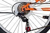 Zoom IMG-1 f lli schiano rider shimano