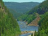Moise River