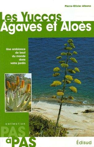 Les Yuccas Agaves et Aloès : Une ambiance de bout du monde dans votre jardin