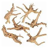 SERJOOC 6Pcs Aquarium Driftwood Spider Wood Ornament for Fish Tank Natural Branches Decorations (4in-6in)