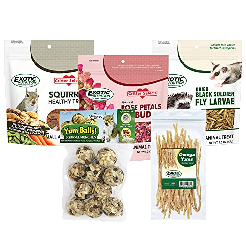 Squirrel Treat Bundle - Natural Healthy Assortment - Fruits, Veggies, Nuts, & Chews - Flying Squirrels, Ground Squirrels, Tree Squirrels, Chipmunks, Groundhogs, Prairie Dogs & Other Rodents