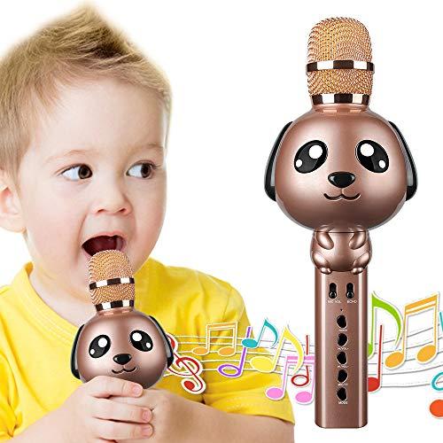 LEERON Karaoke Microphone,...