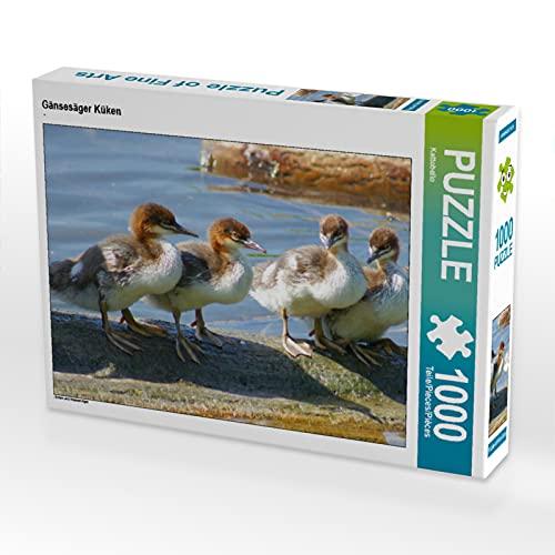 CALVENDO Puzzle Gänsesäger Küken 1000 Teile Lege-Größe 64 x 48 cm Foto-Puzzle Bild von Kattobello