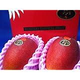 【予約受付商品】宮崎産 太陽のタマゴ 完熟マンゴー 【赤秀】 2玉入り およそ1000g 化粧箱入り