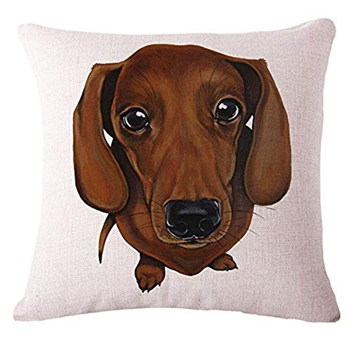 The Beach Stop TBS Cute Animal, Dog, Puppy, Colourful Gift Idea Cushion Covers (Brown Sausage Dog)