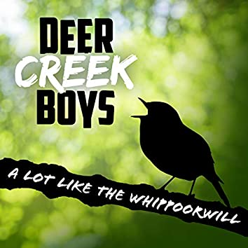 A Lot Like the Whippoorwill
