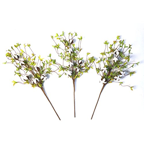 """Cotton Stems - 26"""" Tall Real Elastic Cotton Stalk Rustic Floral with Artificial Green Leaves for Wall Or Desk Decor, Wedding Centerpiece (Pack of 3)"""
