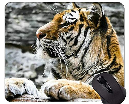 Kunst Mousepad des wilden Tieres, Tiermausunterlagen