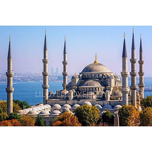 FHGFB 5D DIY Erwachsene Diamantmalerei Sultan Ahmed Moschee Strass Mosaik Bildkunst Geeignet für Freizeit und Familie Wanddekoration Quadratischer Diamant Rahmenlos -30x40cm