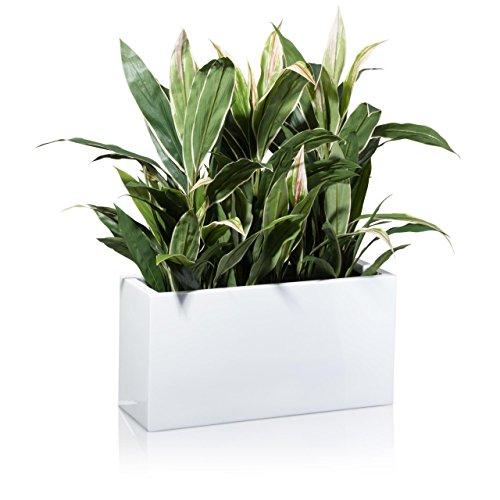 Maceta, jardinera de fibra de vidrio VISIO – color: blanco brillante – maceta grande resistente...