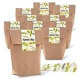 Logbuch-Verlag - Lote de 25 bolsas de Navidad para rellenar, color marrón + pegatinas de Navidad francesas JOYEUSES FurchTES - paquete de regalo de Navidad