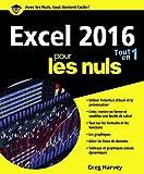Excel 2016 Tout en 1 Pour les Nuls - Edition 2016