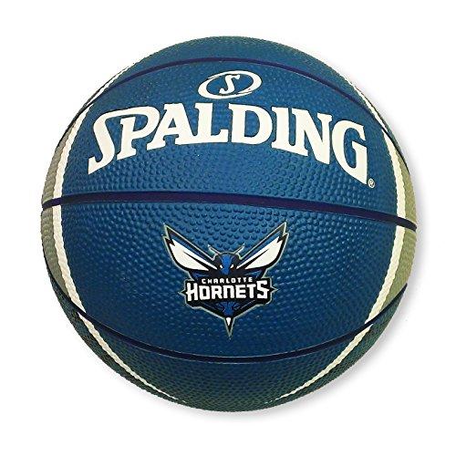 NBA Charlotte Hornets Mini Team Basketball