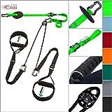 eaglefit sling trainer exclusive elastic, cinghia con incluso supporto per soffitti, galoppino & ancoraggio per porte, regolatore di lunghezza 160-360 cm, resistenza 350 kg, colore: verde (petrol)