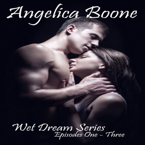 Wet Dream Series audiobook cover art