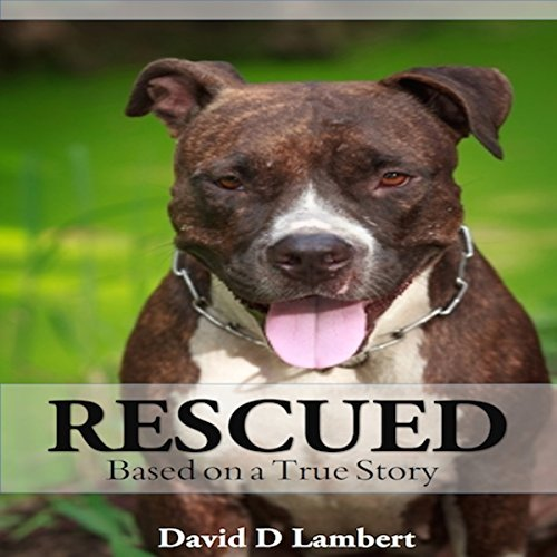 Rescued: Based on a True Dog Story audiobook cover art