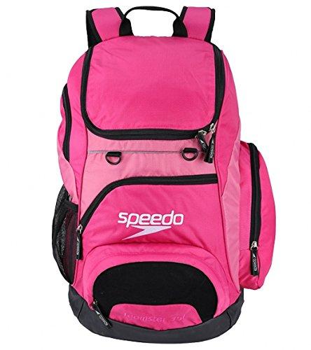 Speedo Unisex Adult Teamster Backpack Bag, Pink, 35 l
