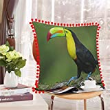 Toucan, Bird In The Wild, Costa Rica funda de almohada personalizada, fundas de almohada de decoración personalizadas, almohada de recuerdo de boda, regalo de cumpleaños