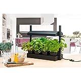 SunBlaster SL1600218 Micro LED Grow Light Garden, 21.75' x 7.75', Black