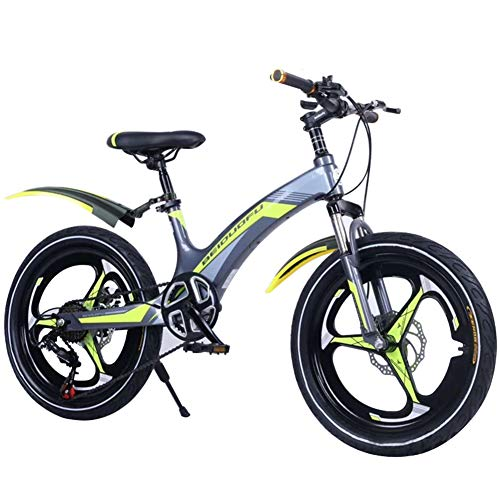 LNX Mountain Bike - 7 Speed Variable speed - Unisex Bbicycle - Double disc brakes with Full Suspension (20inch) Adjustable height