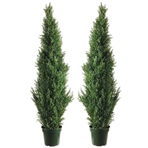 Silk Décor Cedar Topiary with 1565 Tips in Plastic Pot – Pair, 60-Inch, Green