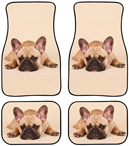 PZZ BEACH Adorable Car Floor Mats Carpet French Bulldog Pattern Interior Decor for Most Cars Suvs Truck All-Weather Protection 4PCS