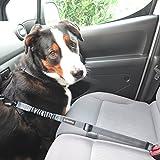 Hunde-Anschnall-Gurt inkl. extra gesichertem Profi-System-Karabiner | Hochwertiger Chrom-Schließhaken | Sicherheits-Gurt mit integrierter Ruck-Dämpfung | Perfekter Autogurt-Adapter | Pets'nDogs - 8