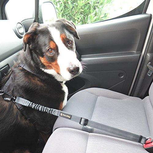 Hunde-Anschnall-Gurt inkl. extra gesichertem Profi-System-Karabiner | - 8