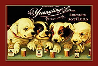DYTrade Yuengling & Son Ale and Beer Dogs Vintage Look Custom Metal Signs 8 x 12 - Bar Cafe Yard Signs House Signs