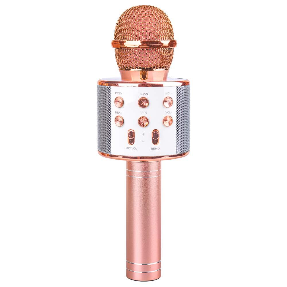 Microphone Wireless Karaoke Children Birthday