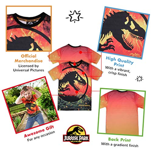 Jurassic World Lava Logo Boys T-Shirt Orange 5-6 Years | Ages 3-13 Childrens Clothes, Jurassic Park Dinosaur Kids Top, Toddler to Teen Child's Birthday Gift Idea