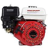 Motore A Benzina 4 Tempi Gasoline Engine Standmotor Motore Kart Motore a...
