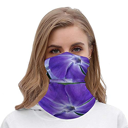 Blue Periwinkle Flowers Photo Unisex Multifunctional Bandana Neck Gaiter Tube Headwear headkerchief, Outdoors Sports Motorcycle Face Mask Bandana Headband for Men Women Face Scarf