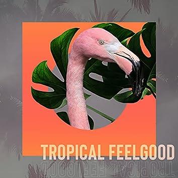 Tropical Feelgood
