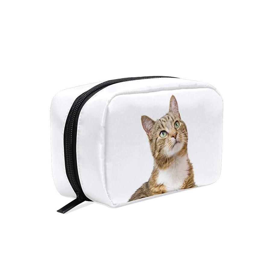 電化するポータブル巨大FengJu 化粧ポーチ 大容量 可愛い メイクポーチ コンパクト 機能的 おしゃれ 持ち運び コスメ収納 仕切り ミニポーチ バニティーケース 洗面道具 携帯用 猫柄